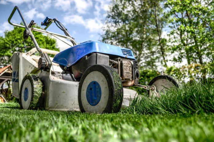 Zielony ogród. Zagęszczanie trawnika w pięciu krokach